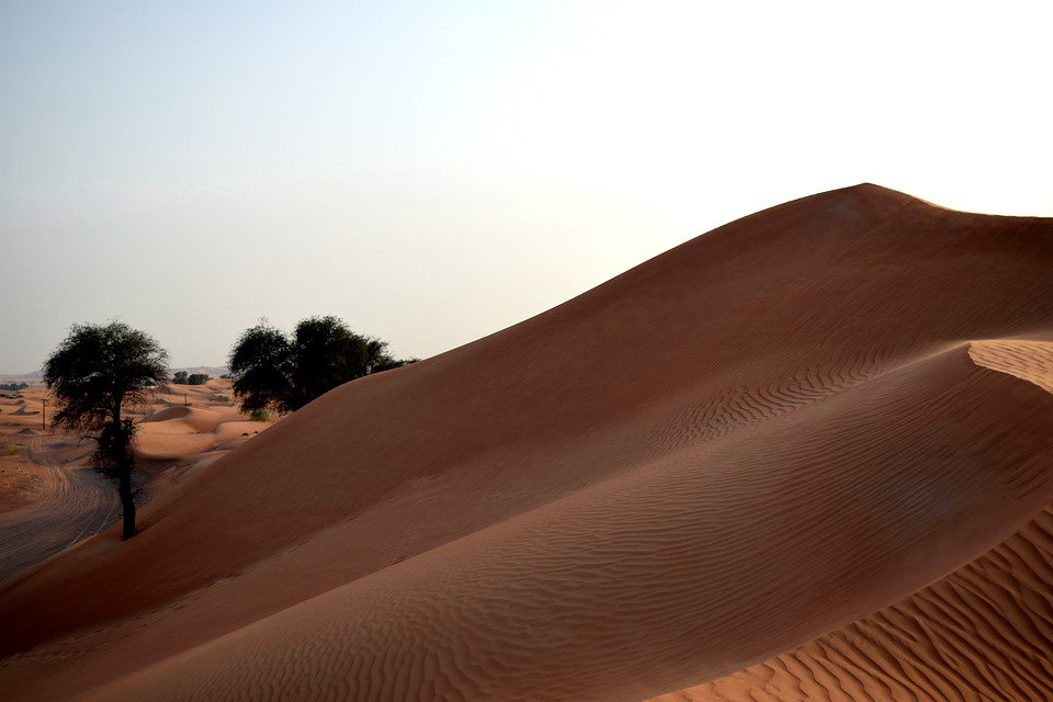 uae desert dmw travel.jpg